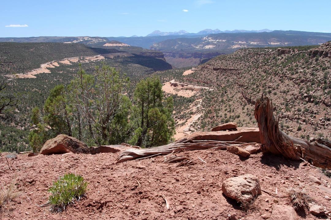 Calamity Mesa views