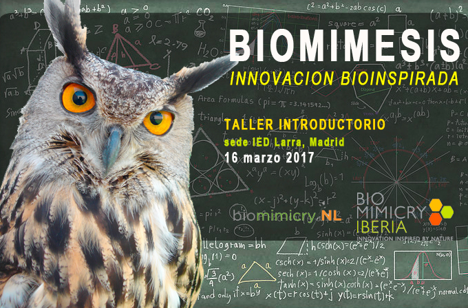Biomimicry Workshop for Entrepreneurs | BioInspired!