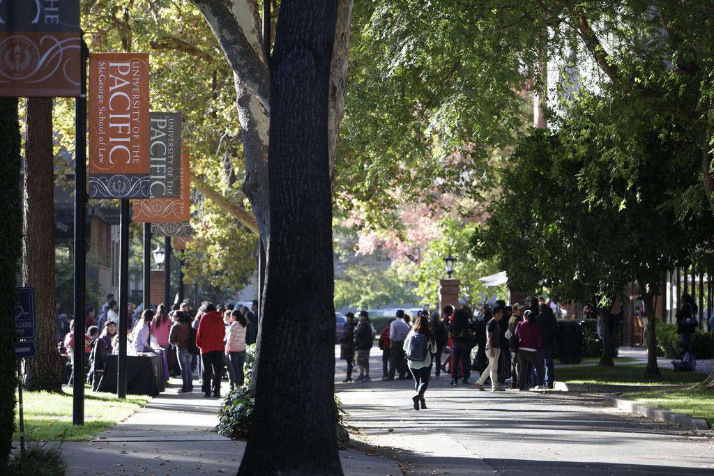 Fall at McGeorge Campus