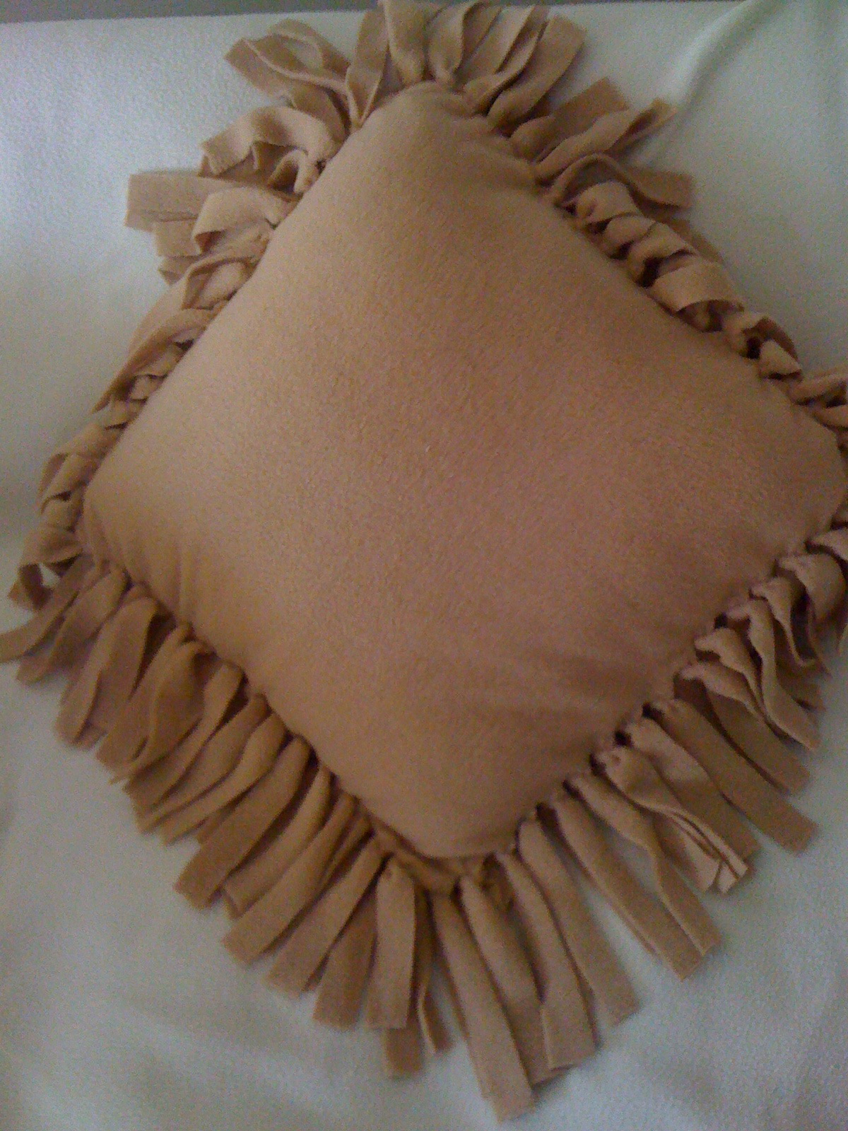 Throw Pillow with Fringes