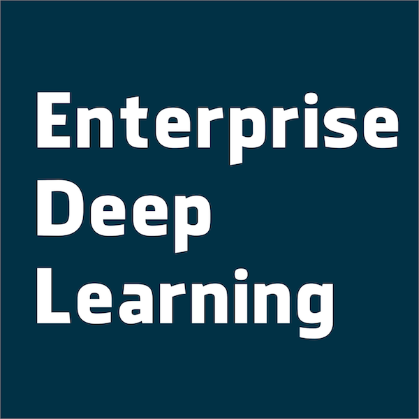 Enterprise Deep Learning