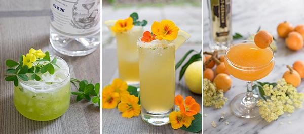 Garden-to-Glass Cocktails
