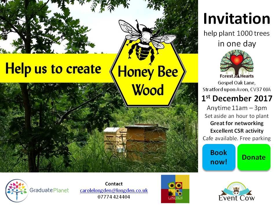 Honey Bee Wood