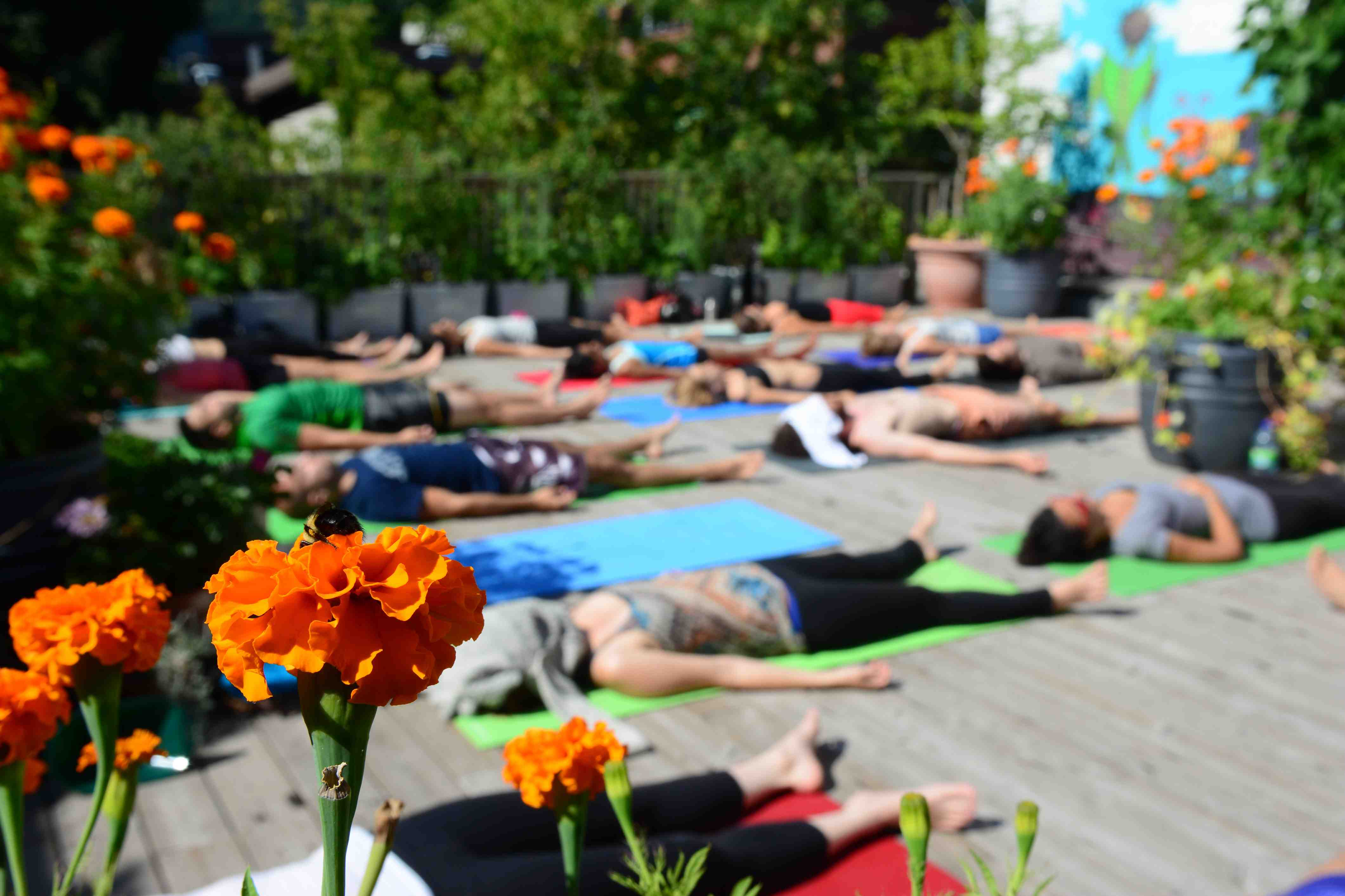Rooftop yoga class - students relax and meditate at the end of a class