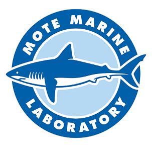 Mote Logo