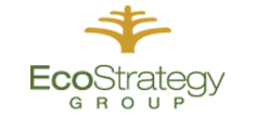 EcoStrategy Group