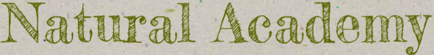 Natural Academy logo