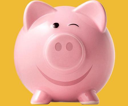 Pink Money Pig