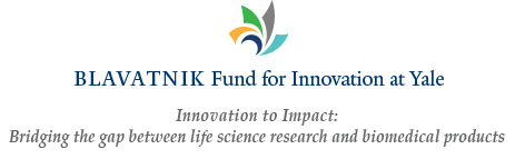 Blavatnik Fund for Innovation at Yale