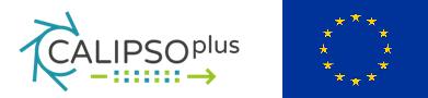 Calipsoplus Micro Nano Symposium 2019
