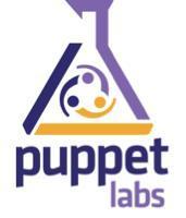 Puppet Master Training: London, UK