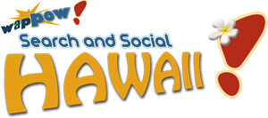 Search and Social Hawaii 2011