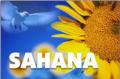 Sahana Software Foundation Annual Meeting
