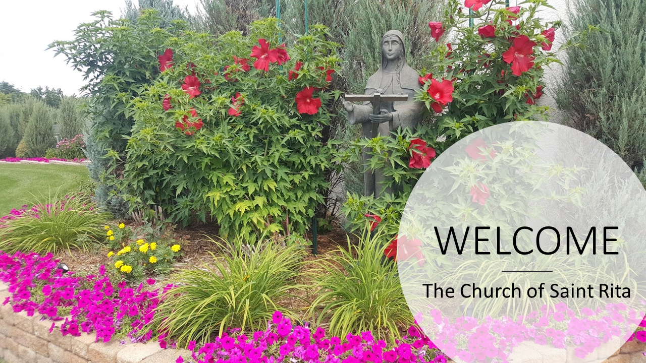 Sign up for Daily Mass - Thursday, June 4
