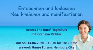 ACCESS BARS ® TAGESKURS HAMBURG 14.06.2020