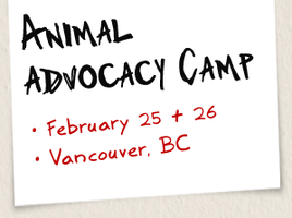 Animal Advocacy Camp 2012