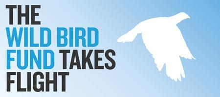 Join Us for The Wild Bird Fund Takes Flight