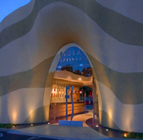 Summer Solstice Napa Facebook Meet Up at Flora Springs