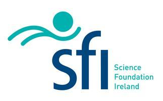 SFI Digital Workshop