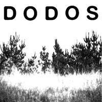 (((folkYEAH!))) & HMML Present:  Dodos + The Luyas +...