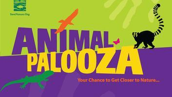 AnimalPalooza!