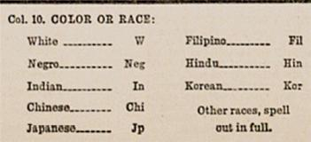 U.S. Census: Rationalizing Race