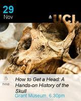 How to Get a Head: A hands-on history of the skull