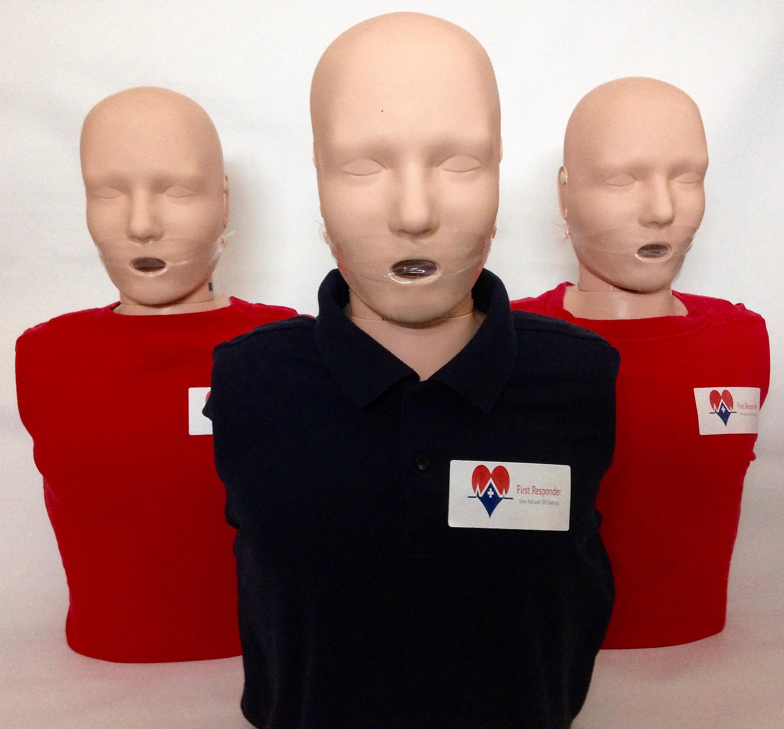 BLS Provider CPR (Full course)