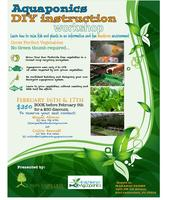 Aquaponics DIY Workshop