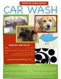 Pawsitive Karma Rescue Car Wash Fundraiser & Dog...