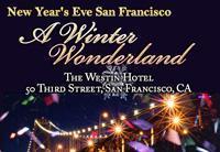 New Year's Eve San Francisco, Winter Wonderland Gala