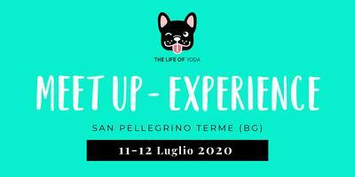 MEET UP EXPERIENCE - The Life of Yoda