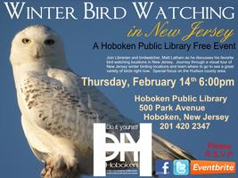 DIY Winter Birdwatching in New Jersey