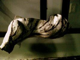 Tangled Memento