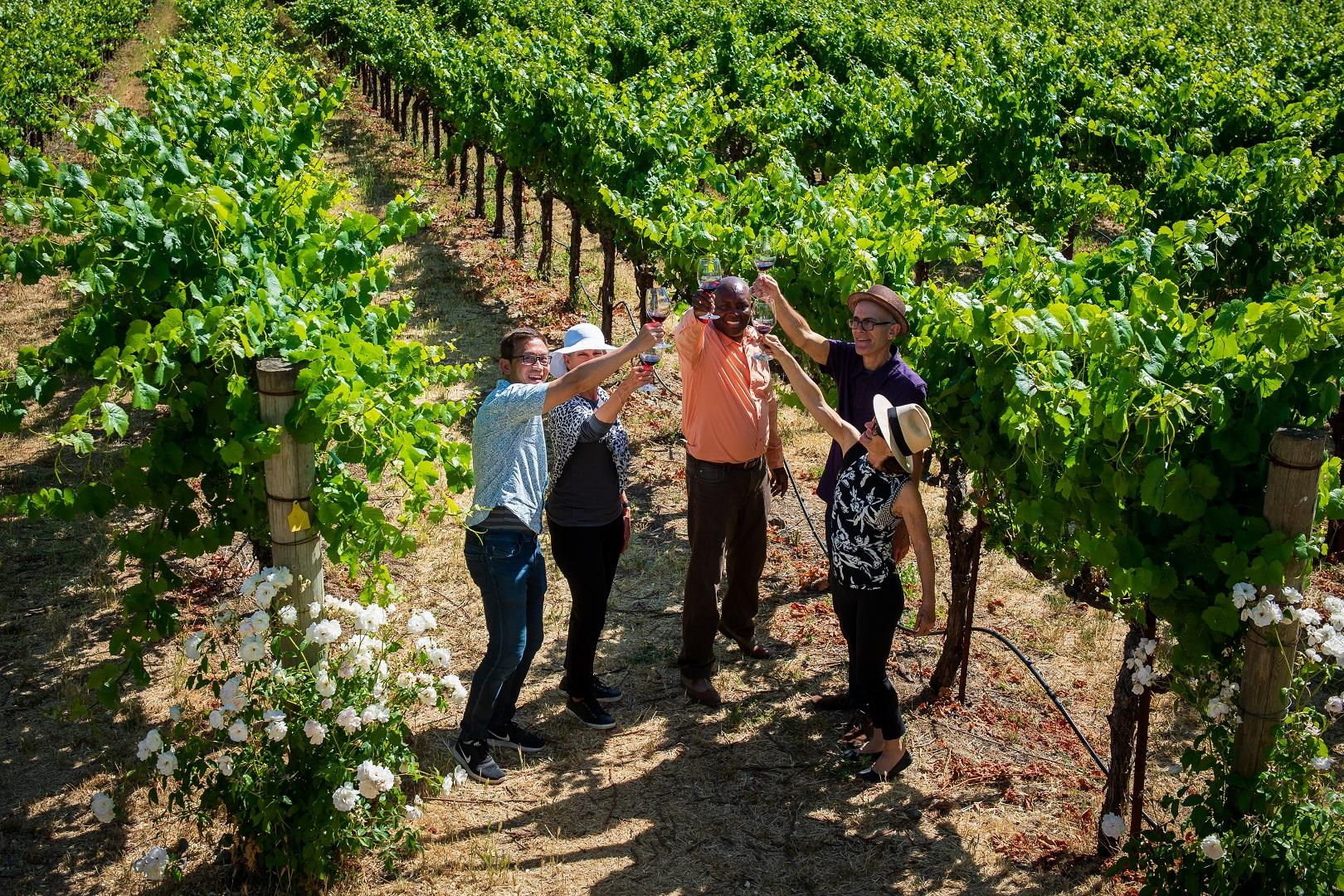 1-day Redwoods and California Wine Country Tour