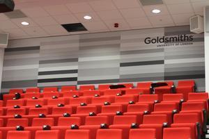 Goldsmiths/ALISN Emerging Art Organisers Conference...