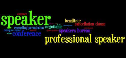 Professional Speaker Training Program
