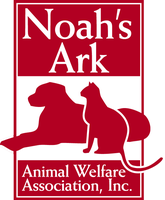 TRICKY TRAY hosted by Noah's Ark Animal Welfare...
