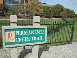 Permanente Creek Workday at Google Campus