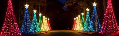 Callaway Gardens Fantasy In Lights