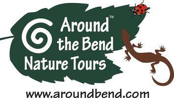 South Fork Wilderness Hike - an alternative to Black...