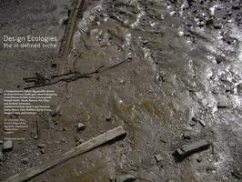 Design Ecologies: the ill defined niche