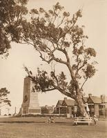 Sacred and Secular: a North Sydney walk with Roy Lumby