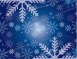 HSPH Winter Ball 2012