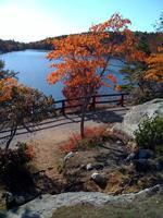 Bear Mountain - Day Hike - Fall Final - 11/19/11