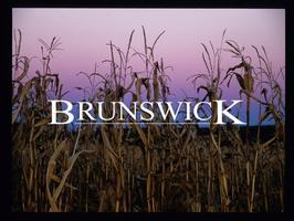 BRUNSWICK screening
