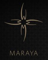 MARAYA Cigar  Introduction to Cigars 101: Cut & Light