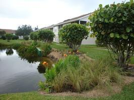 """Florida-Friendly Landscaping™ around Ponds"" presented by..."