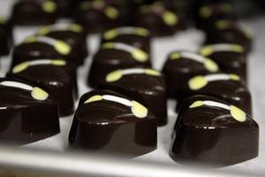 CEAA Alumni Chocolate Tasting