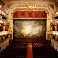 Viennese Dinner and Light Opera Concert